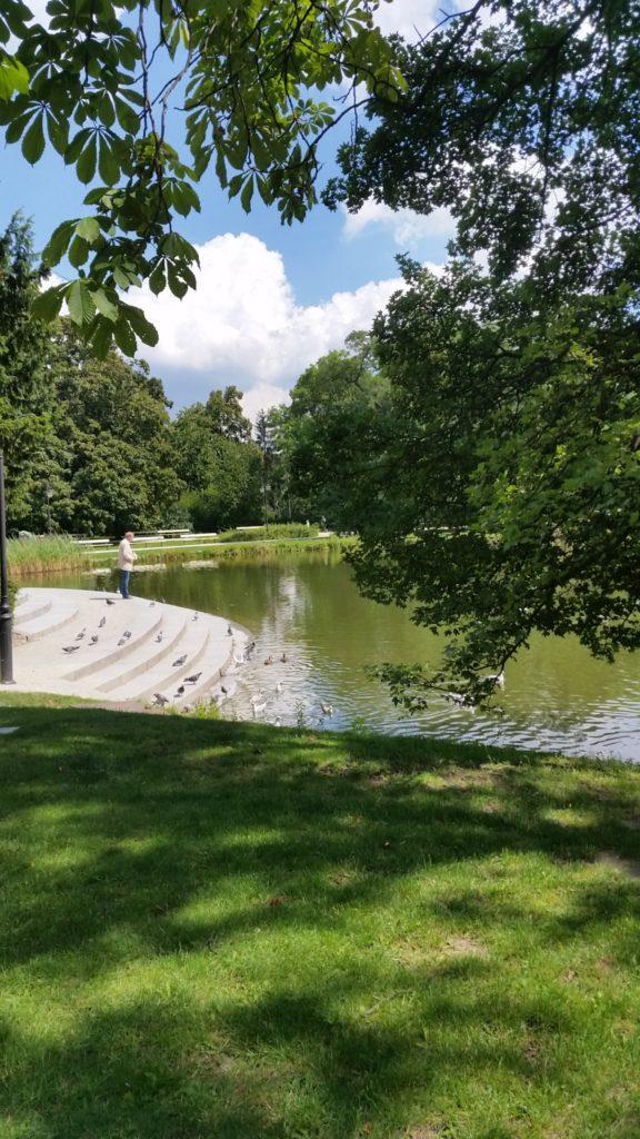 Парк Уяздовский,красивый,чистый,спокойный-3