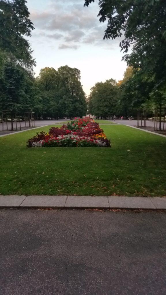 Park Saski w Warszawie-8