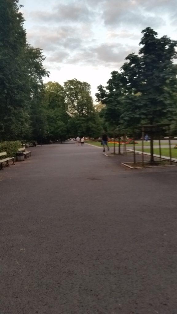 Park Saski w Warszawie-6