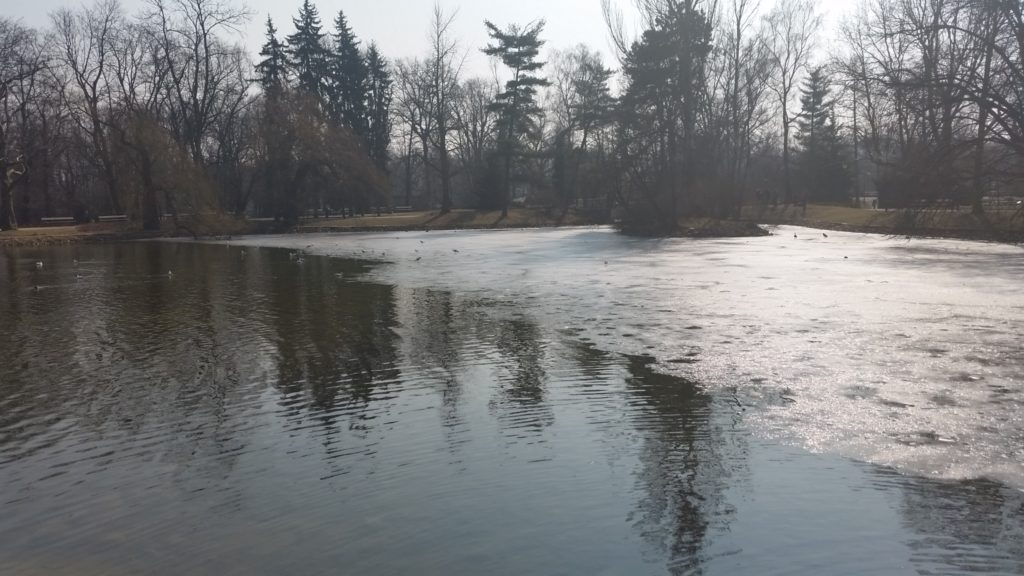 Park Ujazdowski w Warszawie wiosną-5
